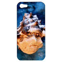 Sea Shell Spiral Apple iPhone 5 Hardshell Case