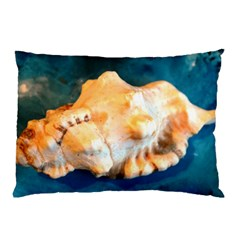 Sea Shell Spiral 2 Pillow Cases (two Sides)