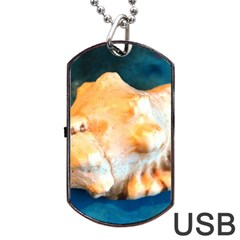 Sea Shell Spiral 2 Dog Tag Usb Flash (two Sides)