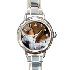 Beagle Sleeping Round Italian Charm Watches