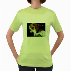Beagle Sleeping Women s Green T-Shirt