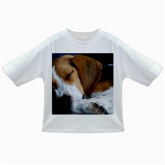 Beagle Sleeping Infant/Toddler T-Shirts