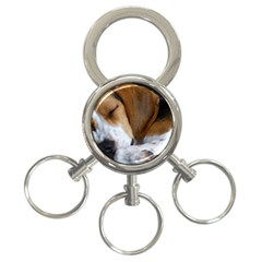 Beagle Sleeping 3-Ring Key Chains