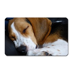 Beagle Sleeping Magnet (Rectangular)