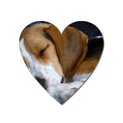 Beagle Sleeping Heart Magnet