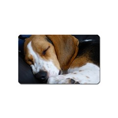 Beagle Sleeping Magnet (Name Card)