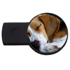 Beagle Sleeping USB Flash Drive Round (1 GB)