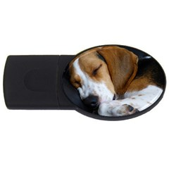 Beagle Sleeping USB Flash Drive Oval (2 GB)