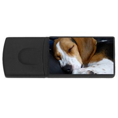 Beagle Sleeping USB Flash Drive Rectangular (1 GB)