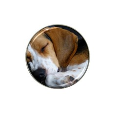 Beagle Sleeping Hat Clip Ball Marker