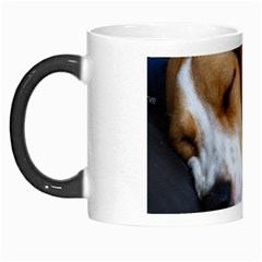 Beagle Sleeping Morph Mugs