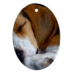 Beagle Sleeping Oval Ornament (Two Sides)