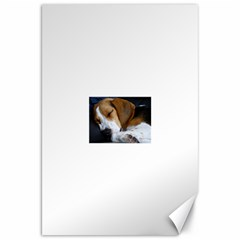 Beagle Sleeping Canvas 20  x 30