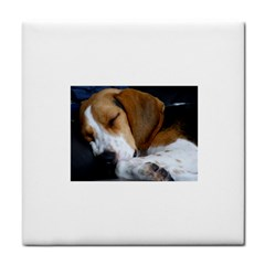 Beagle Sleeping Face Towel