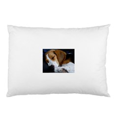 Beagle Sleeping Pillow Cases