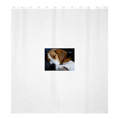 Beagle Sleeping Shower Curtain 66  x 72  (Large)