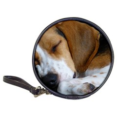 Beagle Sleeping Classic 20-CD Wallets