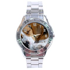 Beagle Sleeping Stainless Steel Men s Watch