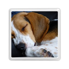 Beagle Sleeping Memory Card Reader (Square)