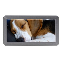 Beagle Sleeping Memory Card Reader (Mini)