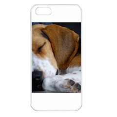 Beagle Sleeping Apple iPhone 5 Seamless Case (White)