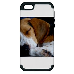 Beagle Sleeping Apple iPhone 5 Hardshell Case (PC+Silicone)