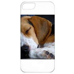 Beagle Sleeping Apple iPhone 5 Classic Hardshell Case
