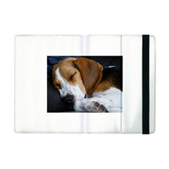 Beagle Sleeping Apple iPad Mini Flip Case