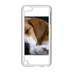 Beagle Sleeping Apple iPod Touch 5 Case (White)