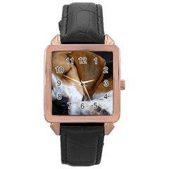 Beagle Sleeping Rose Gold Watches