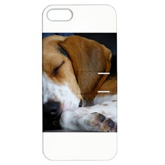 Beagle Sleeping Apple iPhone 5 Hardshell Case with Stand