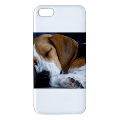 Beagle Sleeping Apple iPhone 5 Premium Hardshell Case