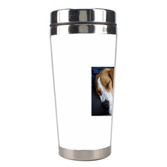 Beagle Sleeping Stainless Steel Travel Tumblers