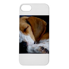 Beagle Sleeping Apple iPhone 5S Hardshell Case