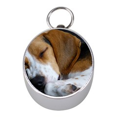 Beagle Sleeping Mini Silver Compasses