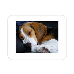 Beagle Sleeping Double Sided Flano Blanket (Mini)