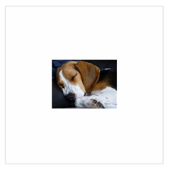 Beagle Sleeping Large Satin Scarf (Square)