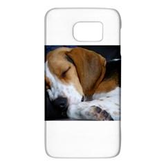 Beagle Sleeping Galaxy S6