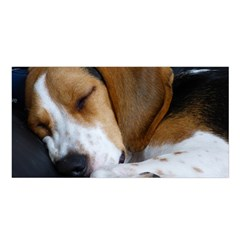 Beagle Sleeping Satin Shawl