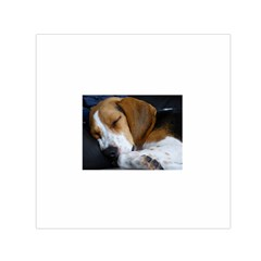 Beagle Sleeping Small Satin Scarf (Square)
