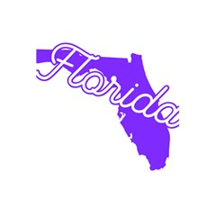 Florida Home State Pride 5 5  X 8 5  Notebooks
