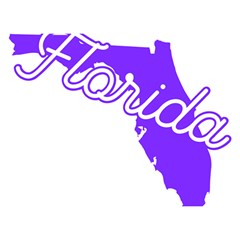Florida Home State Pride Birthday Cake 3d Greeting Card (7x5)