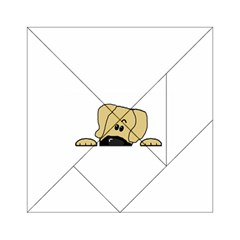 Peeping Fawn Great Dane With Undocked Ears Acrylic Tangram Puzzle (6  x 6 )