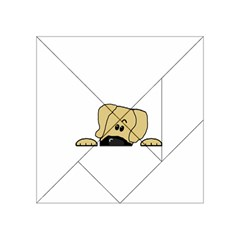 Peeping Fawn Great Dane With Undocked Ears Acrylic Tangram Puzzle (4  x 4 )