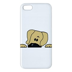 Peeping Fawn Great Dane With Undocked Ears Apple iPhone 5 Premium Hardshell Case