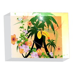 Cute Toucan With Palm And Flowers 5 x 7  Acrylic Photo Blocks