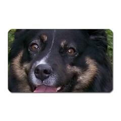 Australian Shepherd Black Tri Magnet (Rectangular)