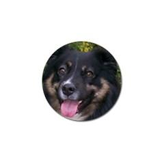 Australian Shepherd Black Tri Golf Ball Marker (4 pack)
