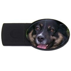 Australian Shepherd Black Tri USB Flash Drive Oval (1 GB)