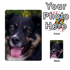 Australian Shepherd Black Tri Multi-purpose Cards (Rectangle)